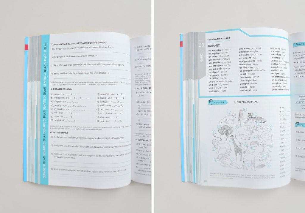 """""""Francuski 365 na każdy dzień"""" - książka do nauki francuskiego codziennie. Czy warto ją kupować?"""
