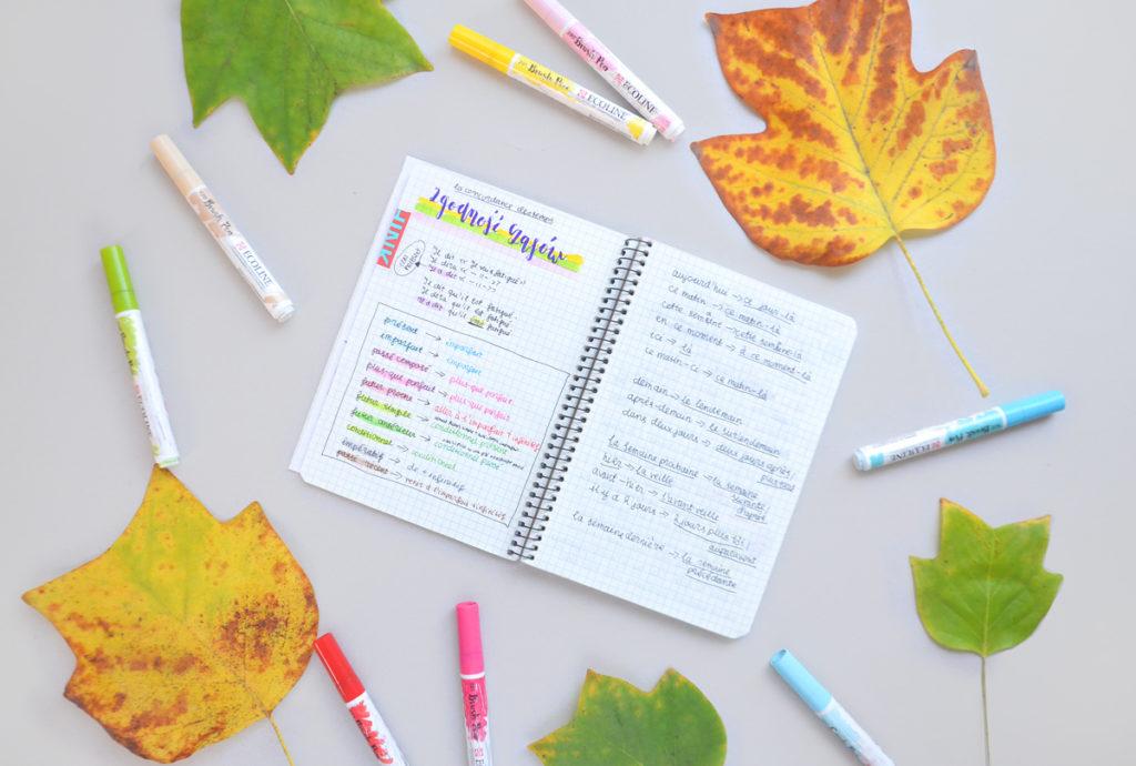 Jak się uczyć francuskiej gramatyki w internecie? Przydatne strony do rozwiązywania zadań i zrozumienia zasad.